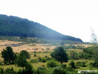 Canencia-Mojonavalle-Sestil de Maillo;viajes alternativos baratos viaje puente de mayo rutas senderi